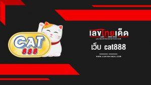 เว็บ cat888